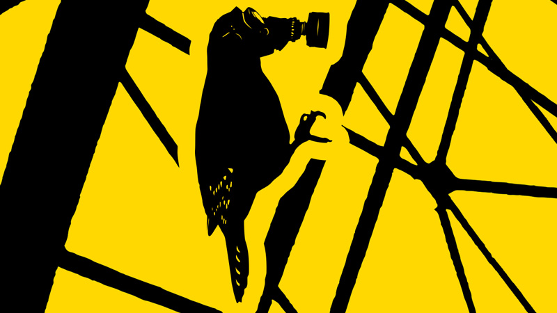 Il complotto di Chernobyl - The Russian Woodpecker